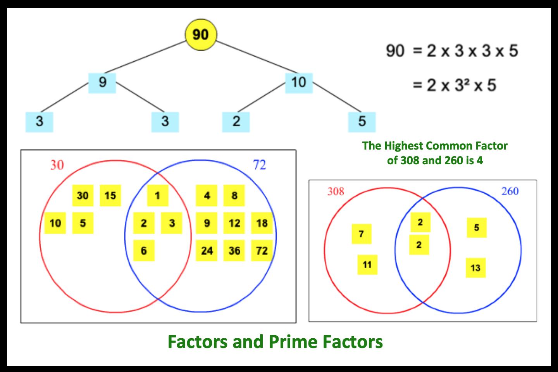 Factors and Prime Factors