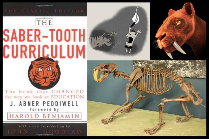 Saber-Toothed Curriculum