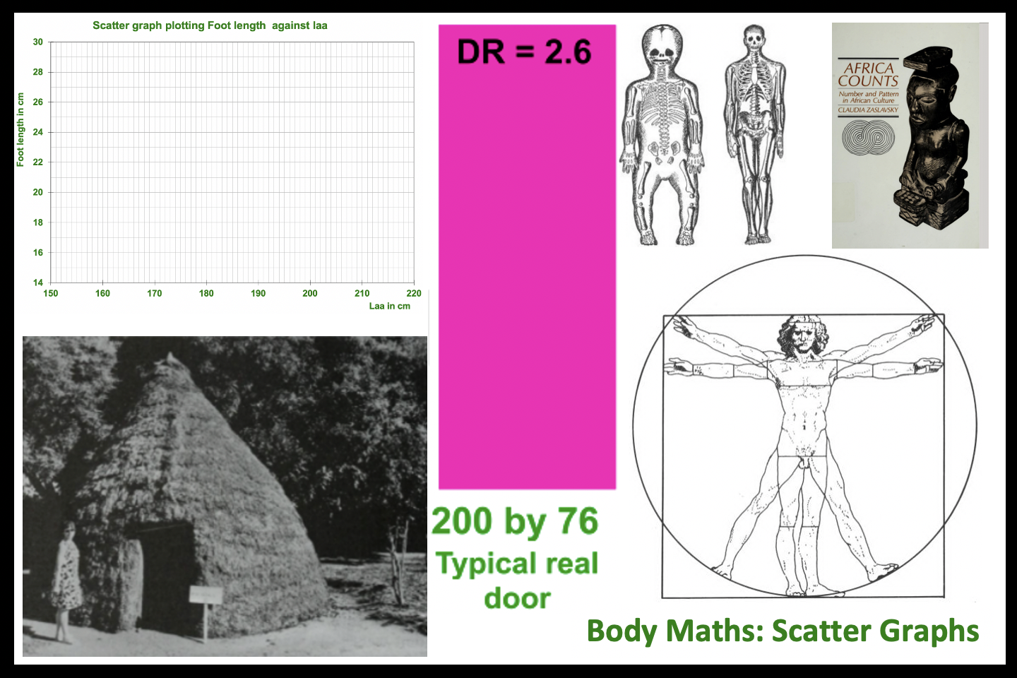 Body Maths: Scatter Graphs